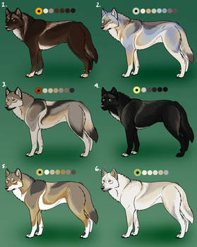 Detailed Natural Wolf Adopts: CLOSED
