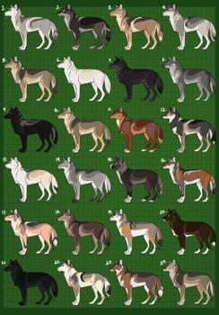 Natural Wolf Design Adopts: CLOSED