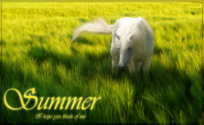Summer by altered-humanity