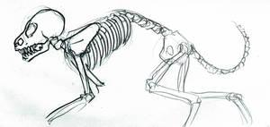 Their Bones
