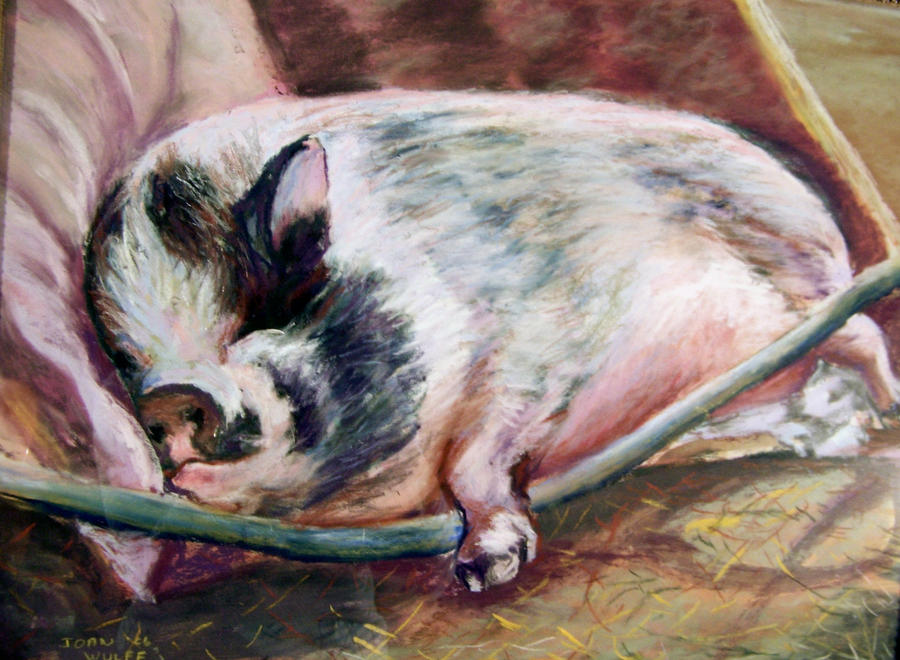 Iris Napping by Wulff-Arts