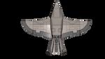 Warhawk 06