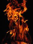 FIRE D