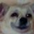 Emoticon #3 - Dog by svettal