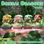 Bonsai Dragons