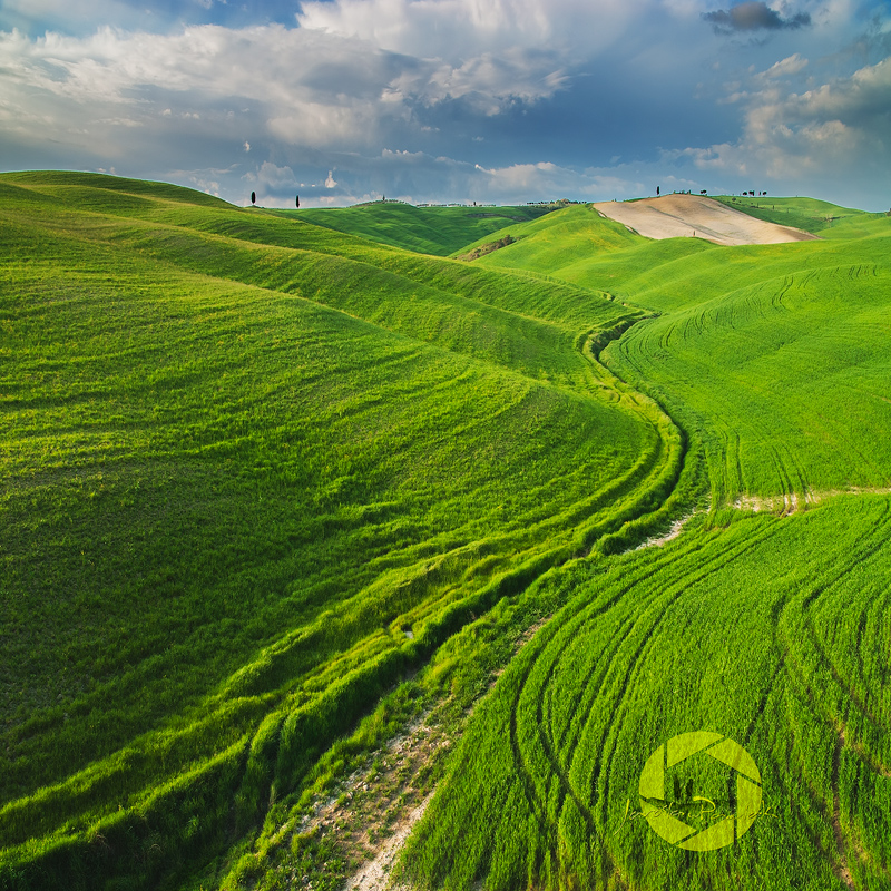 Snake landscape by JPawlak