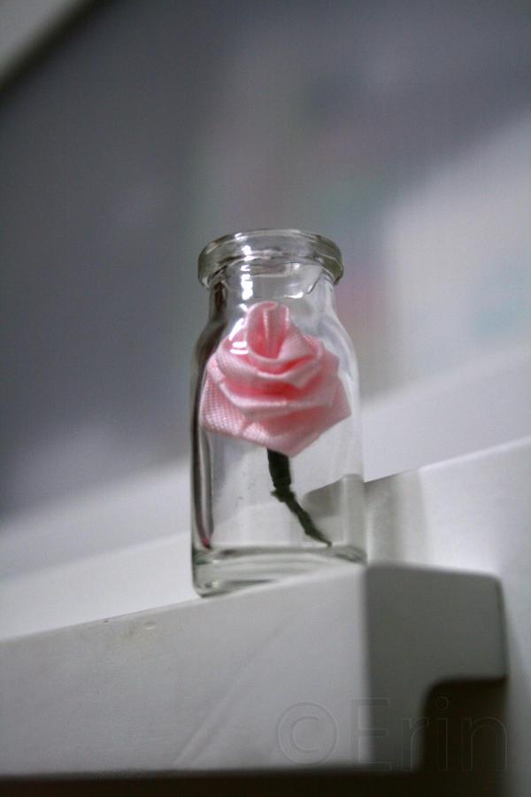 Flower in The Bottle 02 by Erin1392