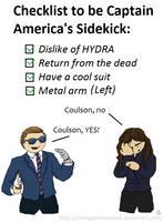 Coulson's Checklist