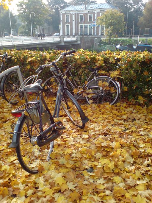 Lowland Autumn by AngelTrent