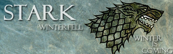 Stark Skin - Banner 1 by blackhavikgraphics