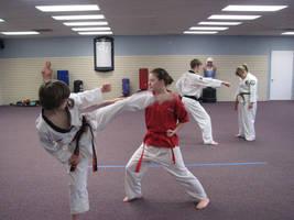 Karate VIII by Wonderdyke-Stock