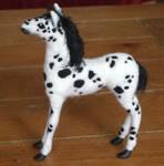 Appaloosa foal other side.
