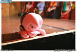 Octopus Luka