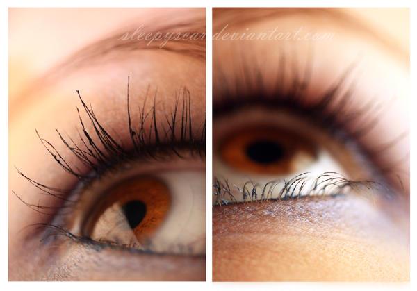 Visual Perception by sleepyscar