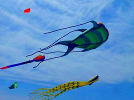 Kites in the sky by xxNuclearKayxx