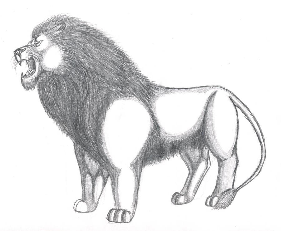 Line Drawing Of Lion : Lion roaring by artyshazzie on deviantart