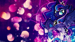 Sparkle Nights