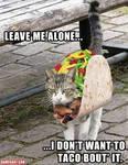 Come one come all get ya taco