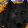 Black wolf icon by XXspiritwolf2000XX