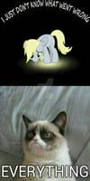 MLP with grumpy cat