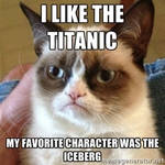 Titanic grumpy cat