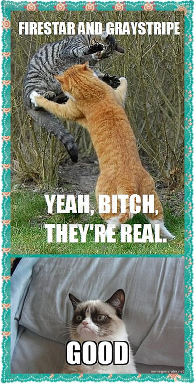 Image Result For Mother Cat With