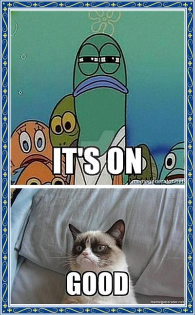 Grumpy cat vs serious fish