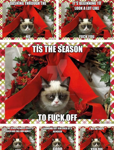grumpy cats christmas meme compilation by xxspiritwolf2000xx - Christmas Names For Cats