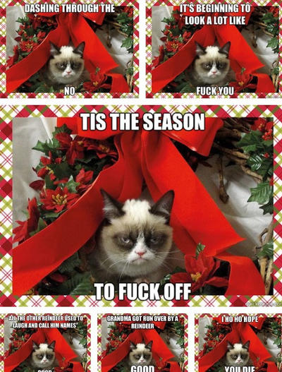 Grumpy Cat Christmas.Grumpy Cat S Christmas Meme Compilation By