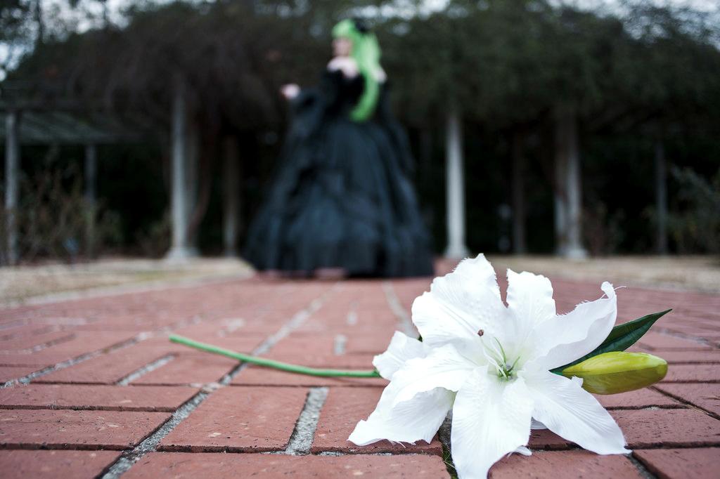 A Forgotten Flower by AkemiYukimura