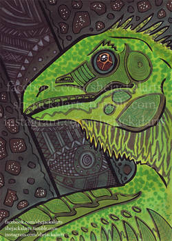 Original-Iguana