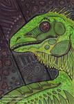 Original-Iguana by Blitzava