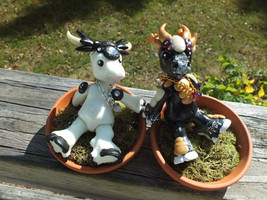 BJD-Cows by Blitzava