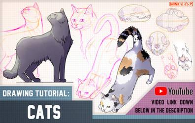 Cats - Mink's Tutorials (YouTube) by Minks-Art