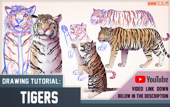 Tigers - Mink's Tutorials (YouTube video)