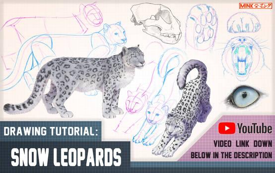 Snow Leopards - Mink's Tutorials (YouTube)
