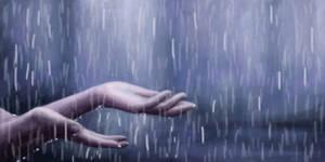 Rain study
