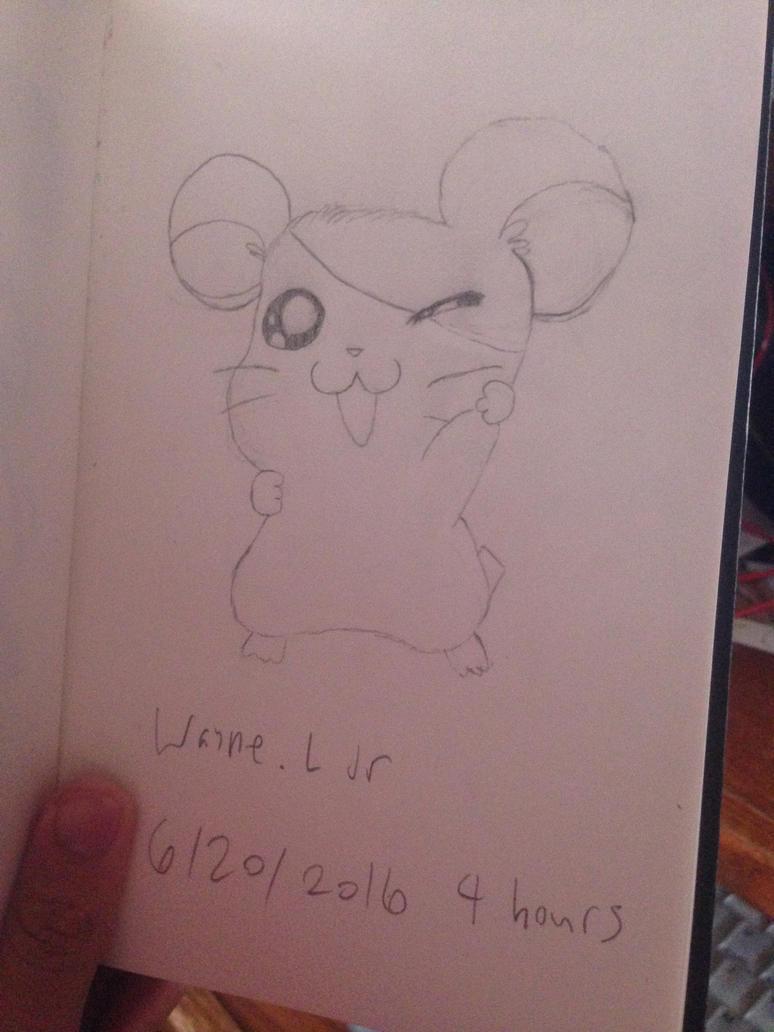 Hamtaro Sketch by LGW1234159