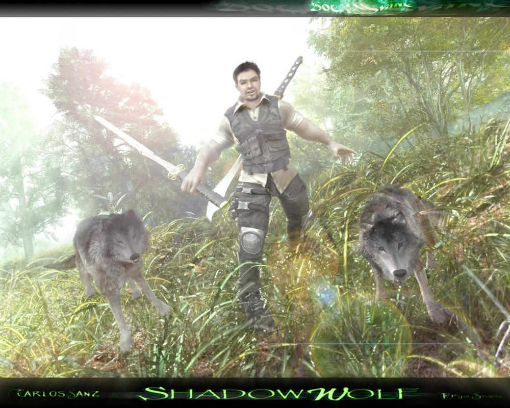 :: THE WOLF STANCE :: by SOULSSHINE