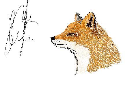 Fox by Frodo-Baggins1994