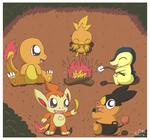 Pokemon Bonfire