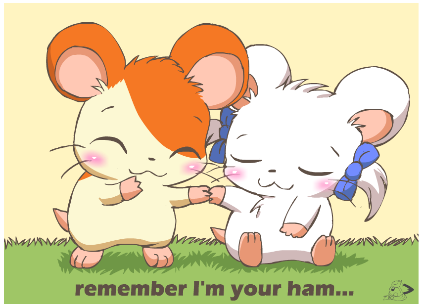 Remember I'm Your Ham by pichu90