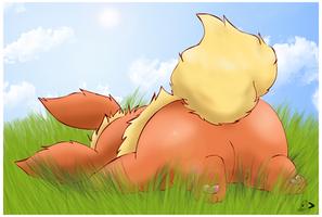 Fluffy Flarey by pichu90
