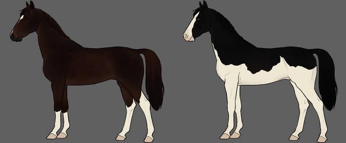 JR - Dutch Harness Horses