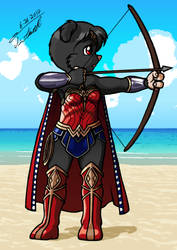 Layloo Wonder Woman