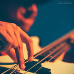 Feel The Strings