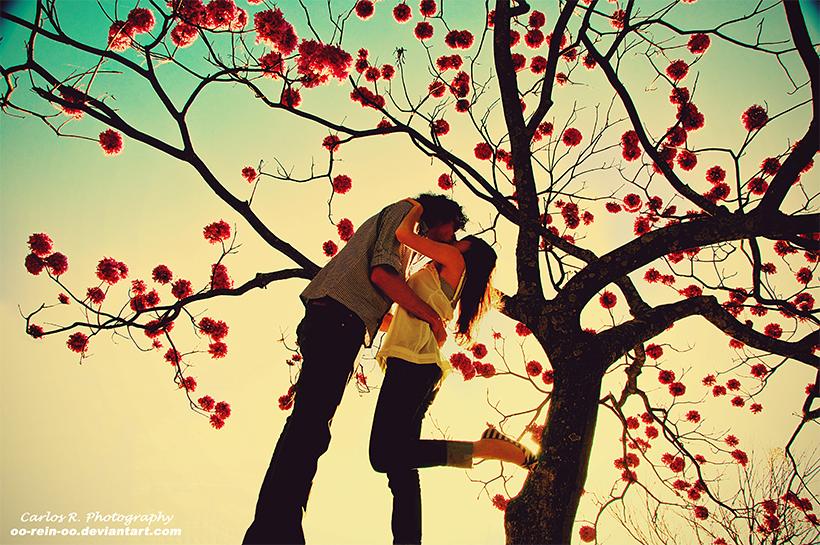 LOVE In Wonderland by oO-Rein-Oo
