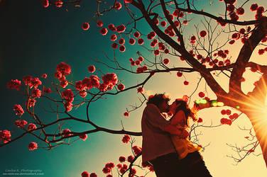 Life Is The Season To LOVE by oO-Rein-Oo