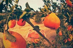 Mr. Orange by oO-Rein-Oo