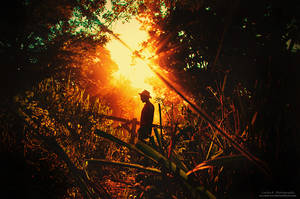 Nightfall At The Forsaken Woods by oO-Rein-Oo